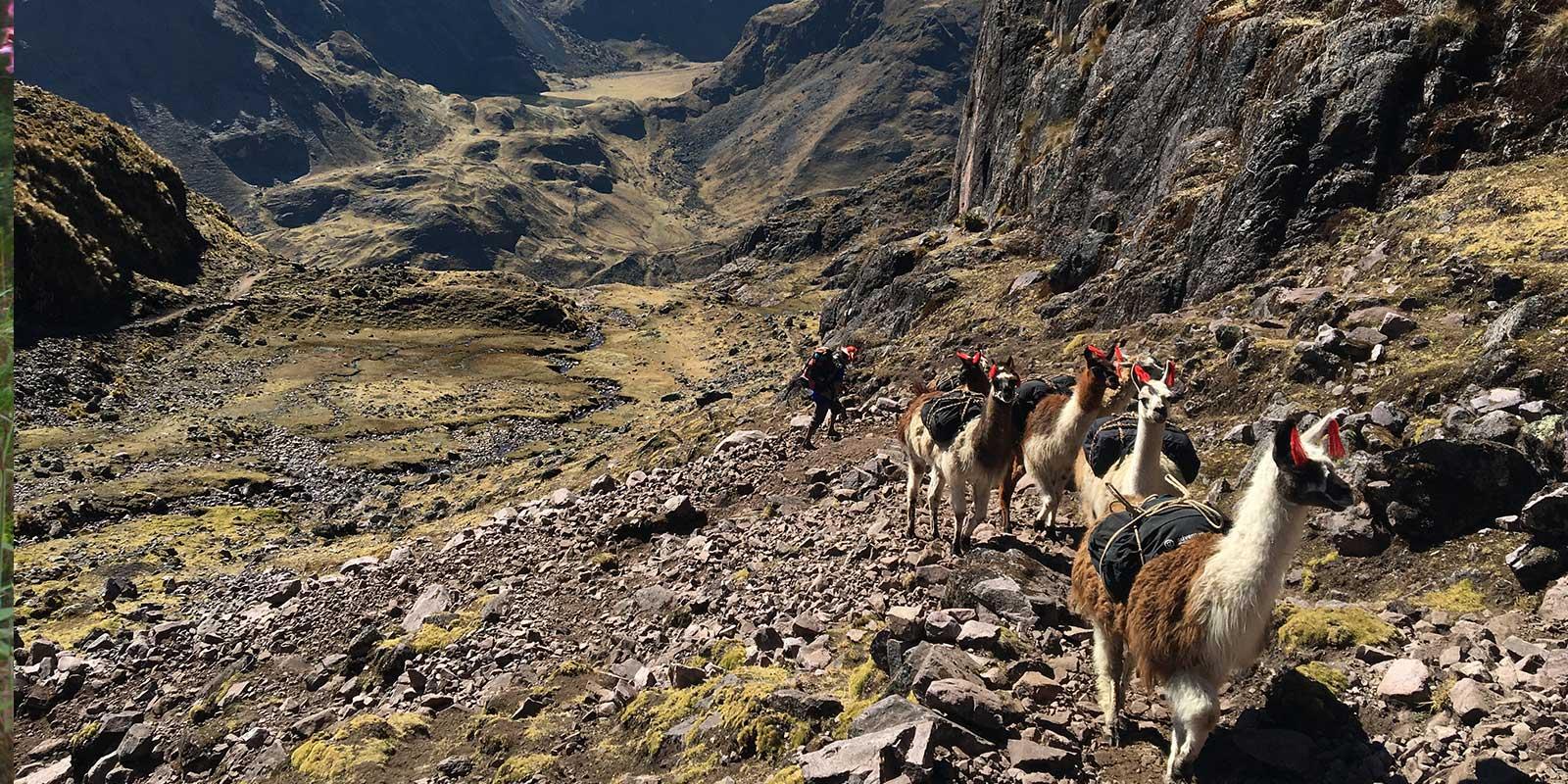 Lares Treks & Hiking Tours
